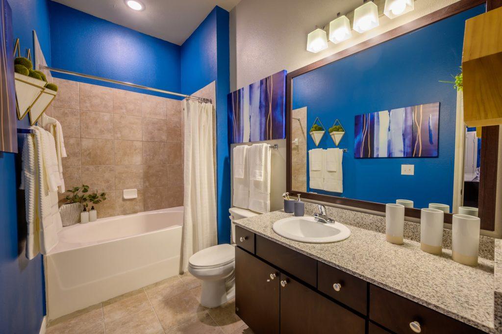 Bathroom - Aspire at 610