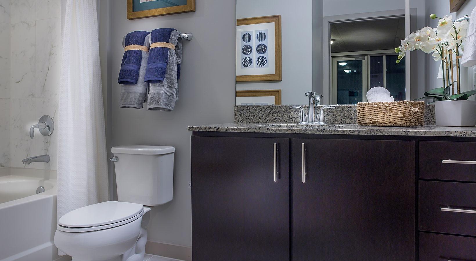 Bathroom - SkyHouse Downtown South Tower